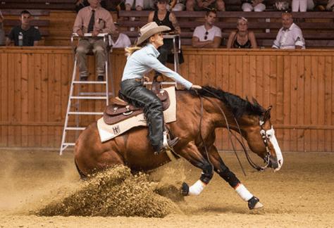 Classic Reining Horse Show